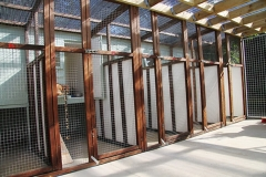 Inside shot of the cattery