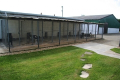 Kennels with dogs