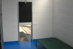 Inside the kennels with dog bed